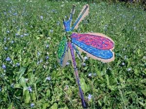 sari's dragonfly 1