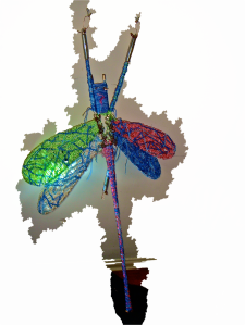 dragonfly light