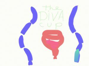 www.divacup.com
