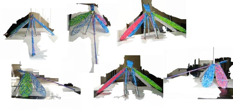 dragonfly multi