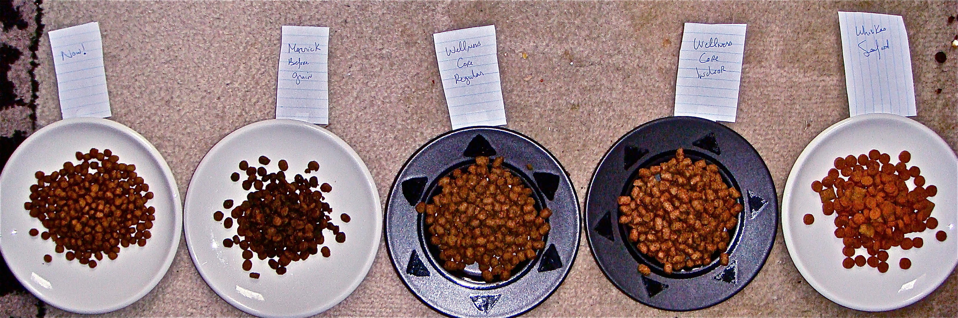 recall & cat headaches in bengal-land:Choosing a new dry cat food
