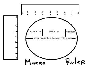 macro ruler