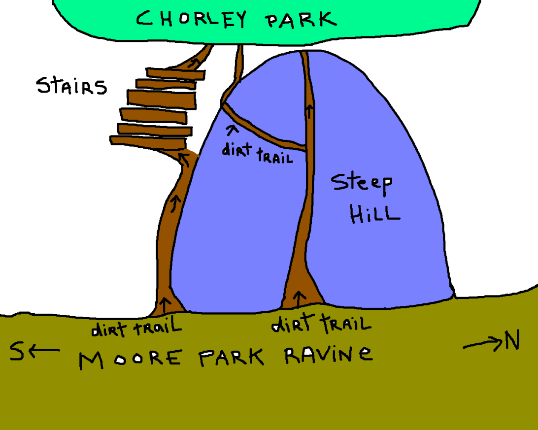 chorley park access